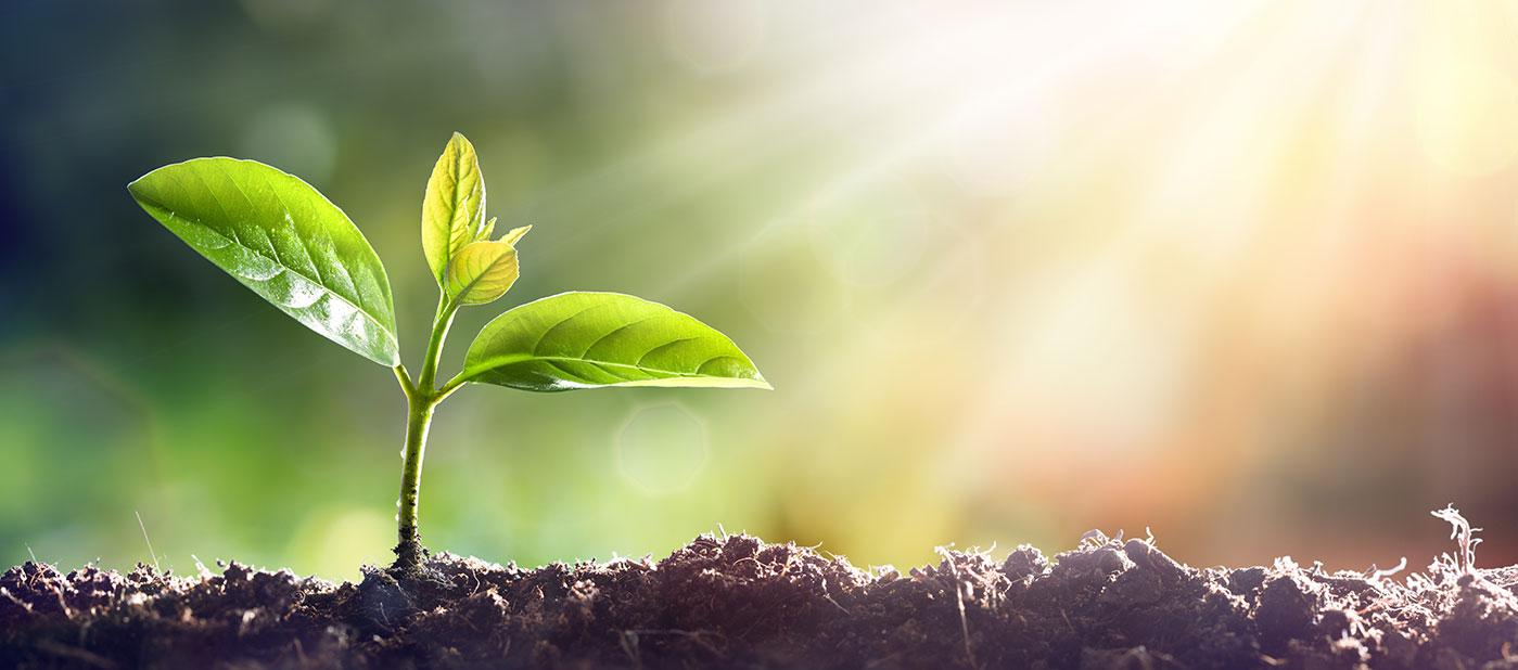 ESG-WebsiteCarousel